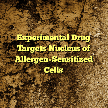 Experimental Drug Targets Nucleus of Allergen-Sensitized Cells
