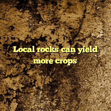 Local rocks can yield more crops