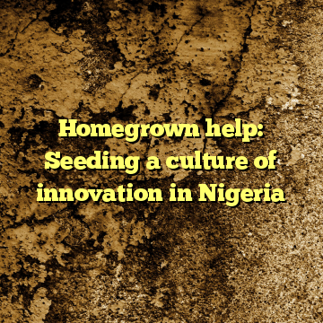 Homegrown help: Seeding a culture of innovation in Nigeria