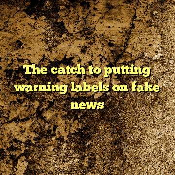 The catch to putting warning labels on fake news
